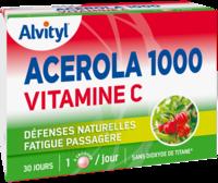 Govital Acerola 1000 à RUMILLY