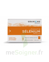 GRANIONS DE SELENIUM 0,96 mg/2 ml S buv 30Amp/2ml à RUMILLY