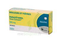 PARACETAMOL TEVA CONSEIL 500 mg, comprimé à RUMILLY