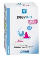 Ergykid Mag Poudre solution buvable 14 Sachets à RUMILLY