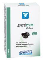 Entezym Cube à mâcher équilibre flore intestinale B/12 à RUMILLY