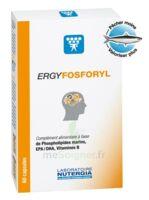 Ergyfosforyl Caps B/60 à RUMILLY