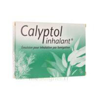 Calyptol Inhalant, émulsion Pour Inhalation Par Fumigation à RUMILLY