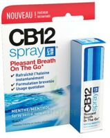 CB 12 Spray haleine fraîche 15ml à RUMILLY