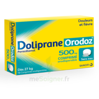 Dolipraneorodoz 500 Mg, Comprimé Orodispersible à RUMILLY