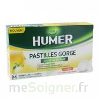 HUMER PASTILLE GORGE à l'etrait sec de thym 24 pastilles à RUMILLY