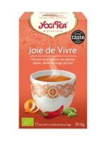 Yogi Tea Joie De Vivre à RUMILLY