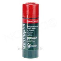 Dermophil Indien Réparation Forte Lèvres 4 g à RUMILLY