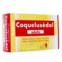 COQUELUSEDAL ADULTES, suppositoire à RUMILLY