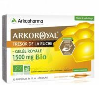 Arkoroyal Gelée royale bio 1500 mg Solution buvable 20 Ampoules/10ml à RUMILLY