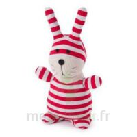 Soframar Bouillotte peluche micro-ondable Lapin Socky Dolls à RUMILLY