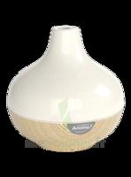 Le Comptoir Aroma Diffuseur céramique à RUMILLY