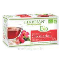 Herbesan Infusion Bio Tisane Circulation élimination 20 Sachets à RUMILLY