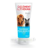 Clément Thékan Shampooing peaux sensibles T/200ml à RUMILLY
