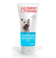 Clément Thékan Shampooing poils blancs T/200ml à RUMILLY