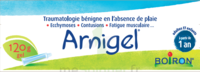 Boiron Arnigel Gel T/120g à RUMILLY
