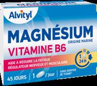 Govital Magnésium Vitamine B6 Comprimés B/45 à RUMILLY