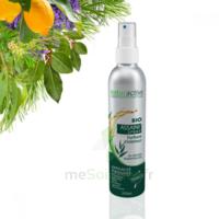Assaini'spray Huiles essentielles BIO Fl/200ml à RUMILLY