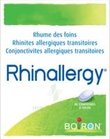 Boiron Rhinallergy Comprimés B/40 à RUMILLY